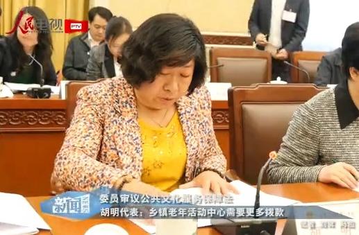 胡明代表:乡镇老年活动中心需要更多拨款