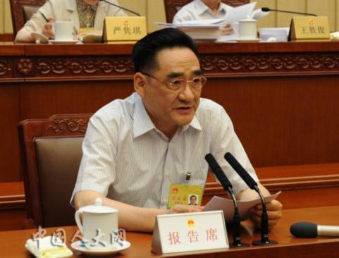 廖晓军作关于2015年中央决算审查结果的报告