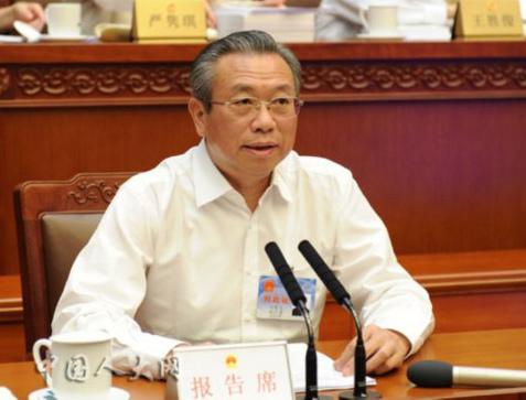 刘家义作2015年度中央预算执行和其他财政收支的审计工作报告