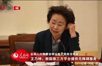 王乃坤:鼓励第三方平台提供无障碍服务