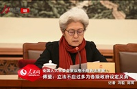 傅莹:立法不应过多为各级政府设定义务